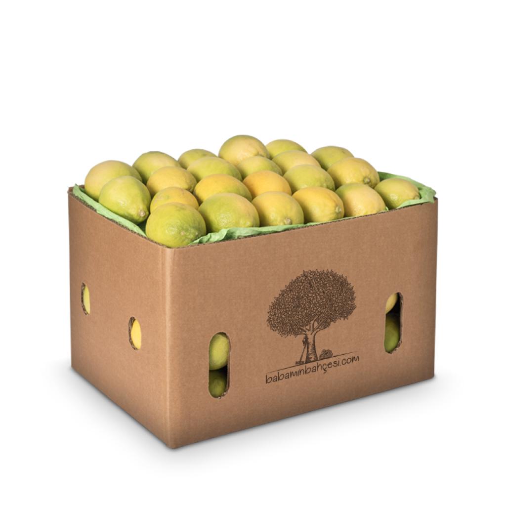 Limon Aydın - 9kg