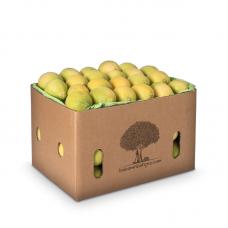 Limon Aydın - 6kg