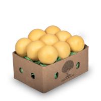 Greyfurt (Sarı) - 3kg