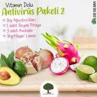 Antivirüs Paketi 2