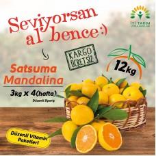 Düzenli Sipariş:Satsuma Mandalin 12kg-3kgx4 Hafta